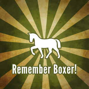 Remember Boxer